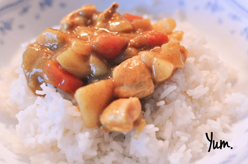 rice-and-curry1