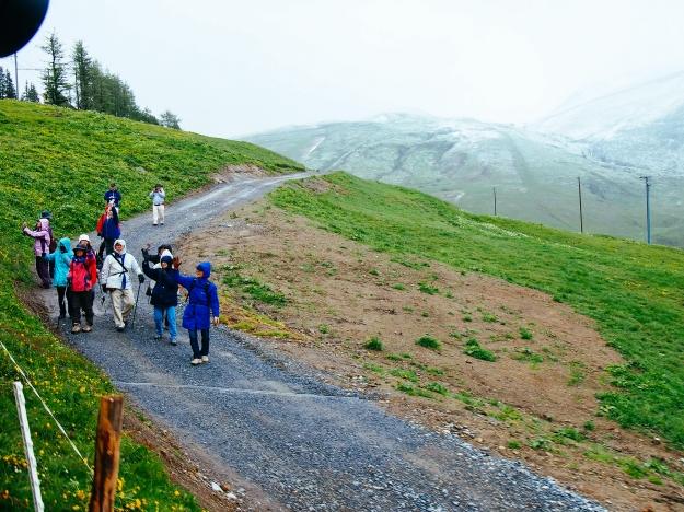 jungfrau hikers